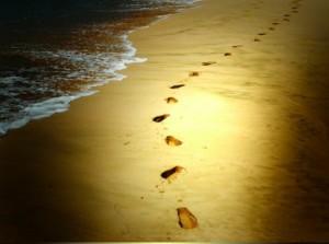 本当に生きたい人生を歩んでいますか?